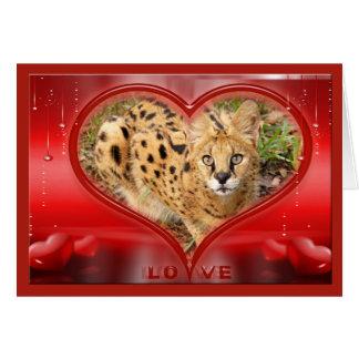 serval-00508 karte