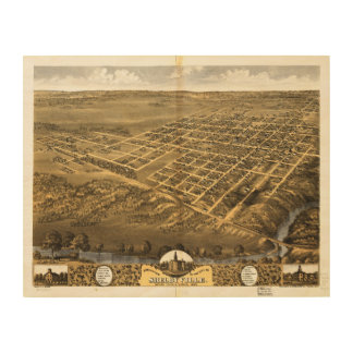 Shelbyville Shelby County Illinois (1869) Holzleinwand