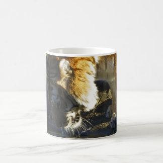 Sibirischer Tiger-Trinken Tasse