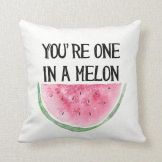 Sie sind eins in einem Melonekissen Kissen