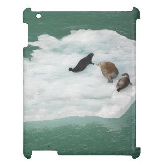 Siegel auf einem Eisberg Ipad Fall iPad Hülle