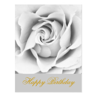 Silberner Rose Geburtstag Postkarte