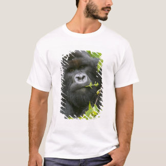 Silverback-Berggorilla T-Shirt