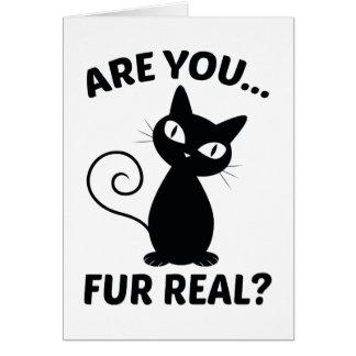 Sind Sie der wirkliche Pelz? Karte