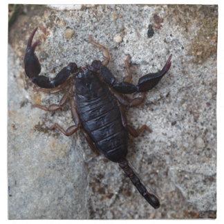 Skorpion des Spezies Euscorpius italicus Stoffserviette