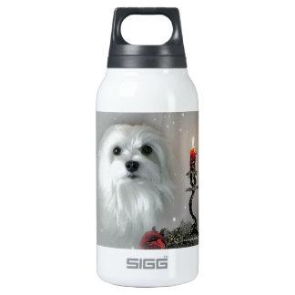 Snowdrop das maltesische isolierte flasche