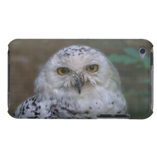 Snowy-Eule, Schneeeule 002,2, iPod Touch Cover