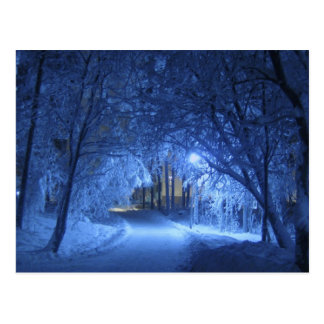 Snowy-Winter-Nacht Postkarte