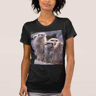 snuggling Familie, meerkats T Shirts