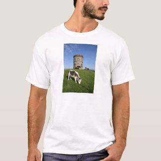 Solomons Tempel + Vieh T-Shirt
