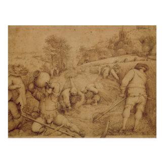Sommer, 1568 postkarte