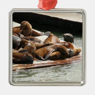Sonnen der Seelöwen in San Francisco Silbernes Ornament