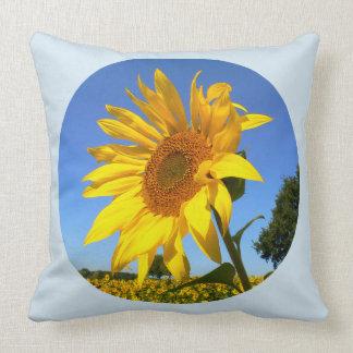 Sonnenblume 01.1., Feld der Sonnenblumen Kissen