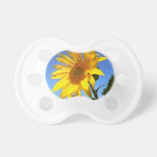Sonnenblume 01.1., Feld der Sonnenblumen Schnuller