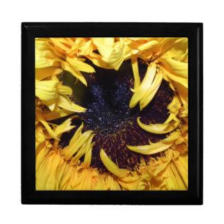 Sonnenblume-Andenken-Kasten Große Quadratische Schatulle