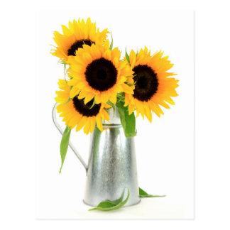 Sonnenblume-Blumenstrauß-Postkarte Postkarte