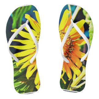 Sonnenblume drehen Reinfälle um Flip Flops