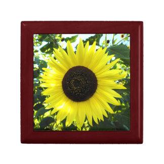 Sonnenblume-Empfindungs-Holz-Geschenkboxen Schmuckschachtel