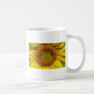 Sonnenblume-Foto Tasse