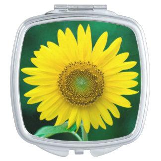 Sonnenblume im Sommer-Quadrat-Vertrags-Spiegel Taschenspiegel