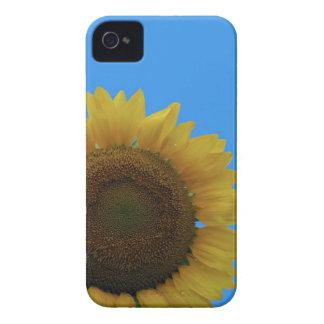 Sonnenblume iPhone 4 Hülle