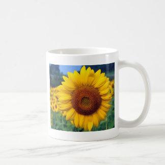 Sonnenblume Kaffeetasse