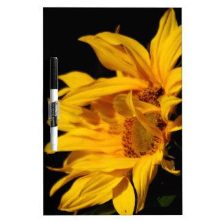 Sonnenblume und Bedeutung Memo Boards