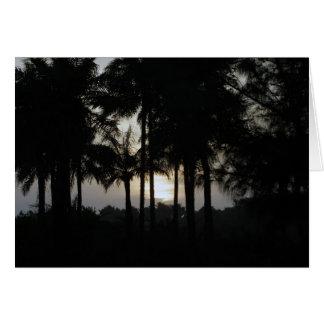 Sonnenuntergang in einem Palmenwald Karte