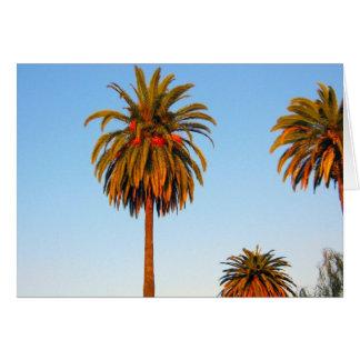 Sonnige Kalifornien-Palme-Gruß-Karte Karte