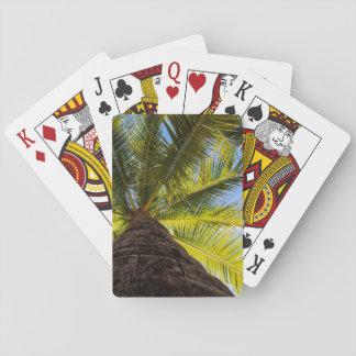 Sonnige Palme Spielkarten