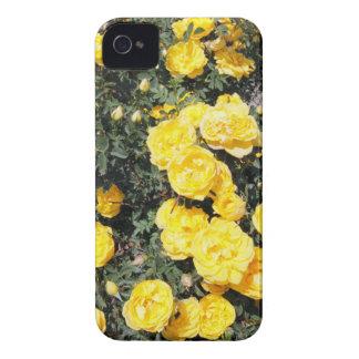 Sonniger gelber Rosen-Blumen-Bus iPhone 4 Hüllen