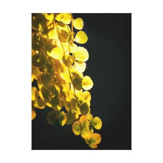 Sonniges Blätter Leinwanddruck