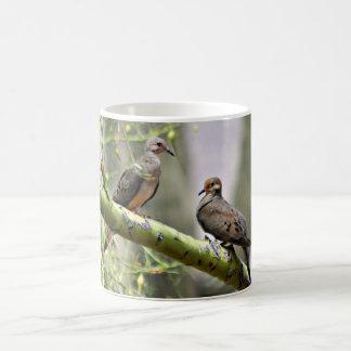 Sonoran Liebe-Tauben-Kaffee-Tasse Tasse