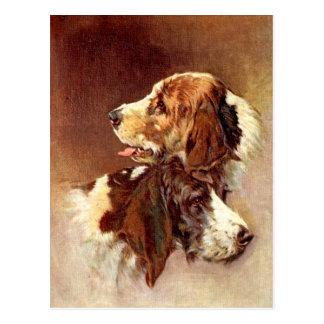 Spaniel-HundeVintager Kunst-Entwurf Postkarte
