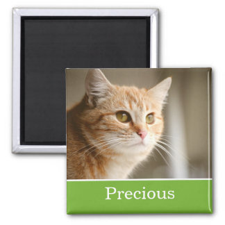 Spaß-grüner personalisierter Haustier-Foto-Magnet Kühlschrankmagnete