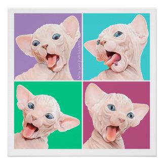 Sphynx Katze Poster