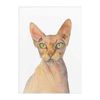 Sphynx Katzen-Aquarell-Porträt Acryl Wandkunst