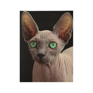 Sphynx mit grünen Augen Holzposter