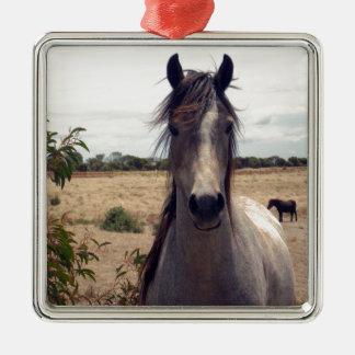 Spielen Sie das arabische Pferd die Hauptrolle, Silbernes Ornament