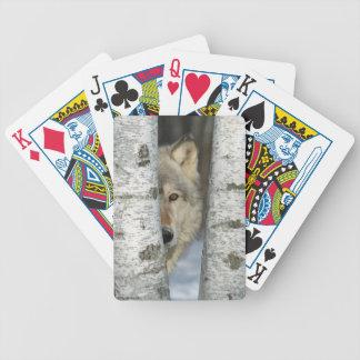 Spielkarten mit pic des grauen Wolfs in den