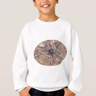 Spinne auf Felsen Sweatshirt