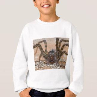 Spinne b sweatshirt