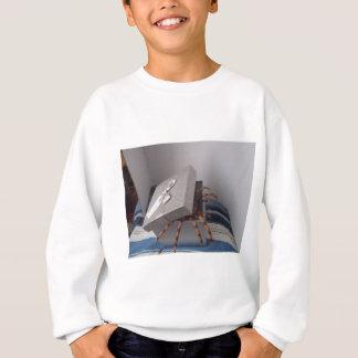 Spinne in den Geschenkboxen Sweatshirt
