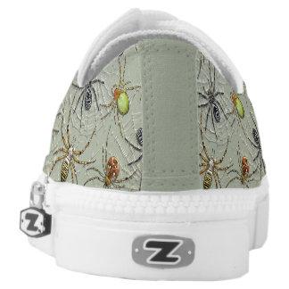 Spinnen fangen Zipz Schuhe, Frauen 6 US-Mann-4/US Niedrig-geschnittene Sneaker