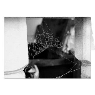 Spinnen-Netz-Karte Karte
