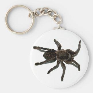 Spinnenliebhaber Schlüsselanhänger