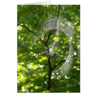 Spinnennetz Karte
