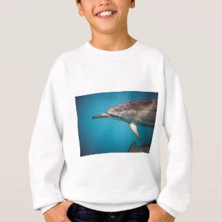 Spinner-Delphin Sweatshirt