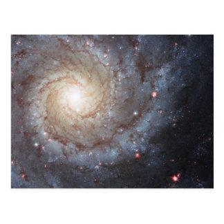 Spiralarm M74 Postkarte