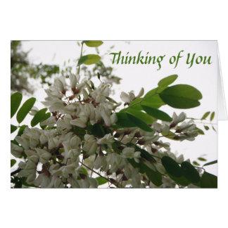 *Spring Blossoms* leeres Notecard Grußkarte